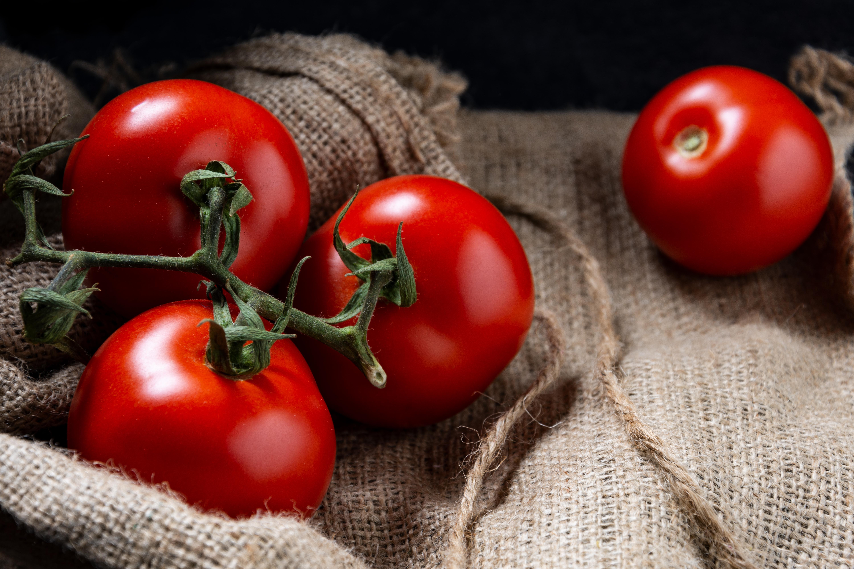 M19_Foodfotografie_Thalhammer